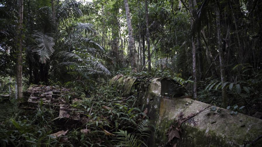 Папуа Нова Гвинея