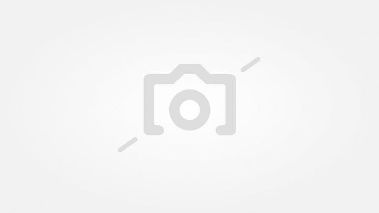 6af9b4e68f2 Луди разпродажби за пролетно настроение - Новини | Vesti.bg