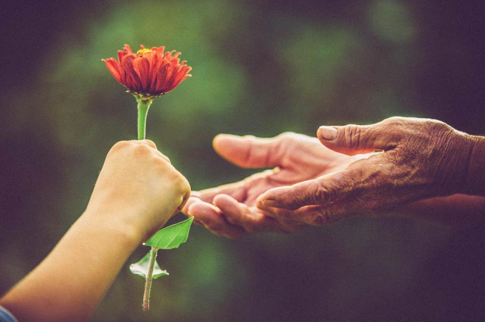 ръце цвете