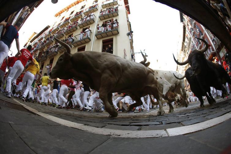 """<p>Шестима души пострадаха, като единият е с прободна рана в крака, по време на днешното бягане пред биковете на фестивала Сан Фермин в Памплона. В предишните дни на фестивала двама американци и двама испанци бяха приети в болница с прободни рани. Фестивалът Сан Фермин в Памплона започна в събота. Той продължава девет дни и привлича около един милион посетители.. Пускането на биковете става световноизвестно, когато Хемингуей го описва в романа си """"Фиеста"""", публикуван през 1926 г.</p>"""