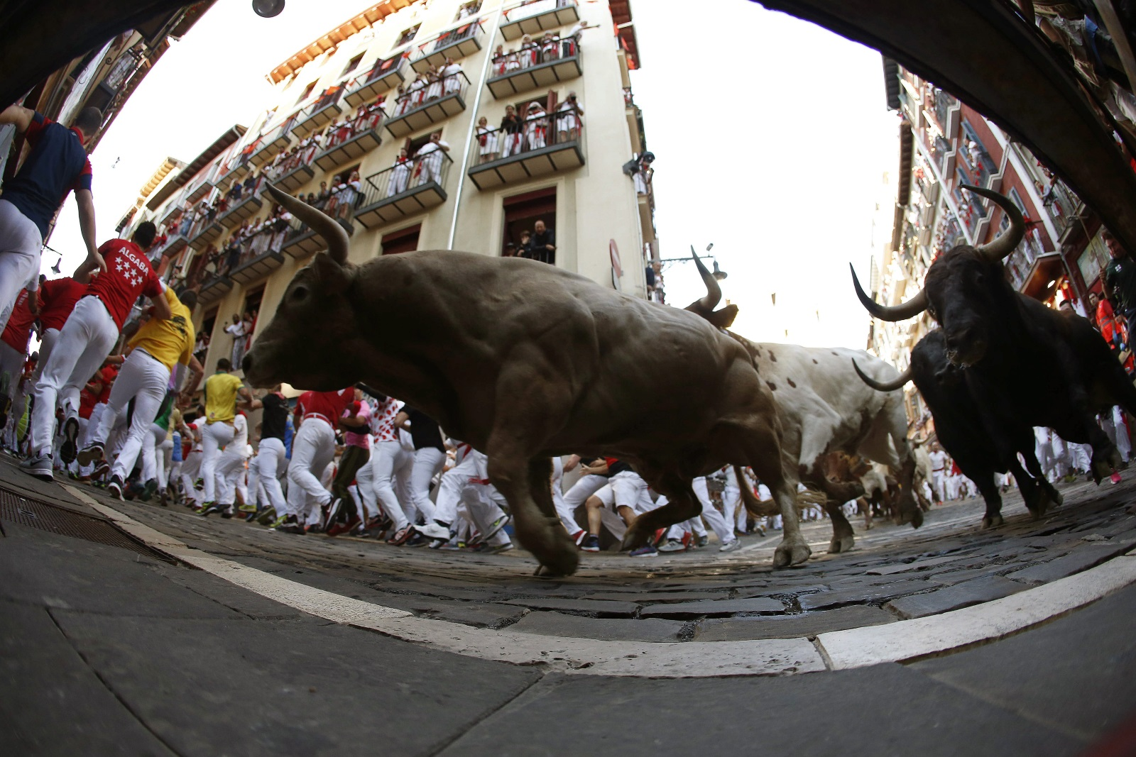 <p>Шестима души пострадаха, като единият е с прободна рана в крака, по време на днешното бягане пред биковете на фестивала Сан Фермин в Памплона. В предишните дни на фестивала двама американци и двама испанци бяха приети в болница с прободни рани. Фестивалът Сан Фермин в Памплона започна в събота. Той продължава девет дни и привлича около един милион посетители.. Пускането на биковете става световноизвестно, когато Хемингуей го описва в романа си &quot;Фиеста&quot;, публикуван през 1926 г.</p>