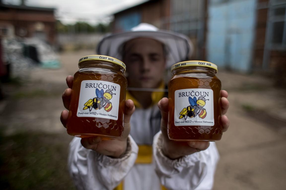 Миналата година затворниците събраха 250 кг мед. Тази година те очакват реколта само от 100 кг поради лоши метеорологични условия.  Затворът Херманице е на добро място за пчеларство, тъй като има много липи, клен и върба.
