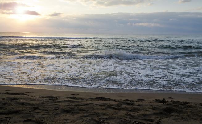 Изкуствен интелект пази плажовете на Австралия