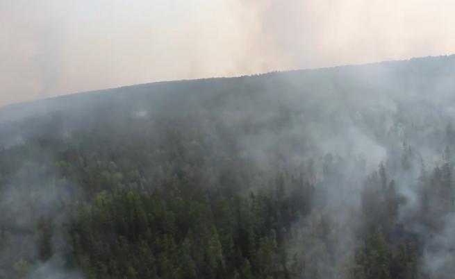 Пожарите в Сибир обхванаха територия, колкото Белгия