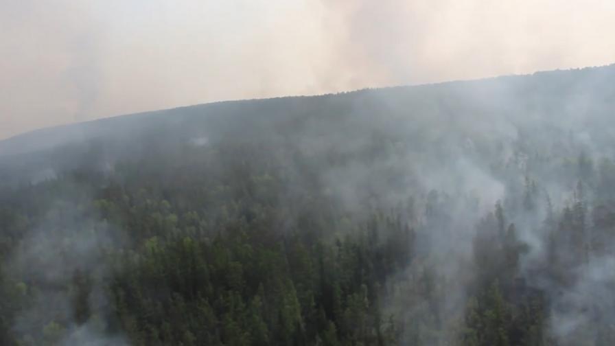 <p>Пожари&nbsp;в Сибир на&nbsp;територия, колкото Белгия, Путин прати армията</p>