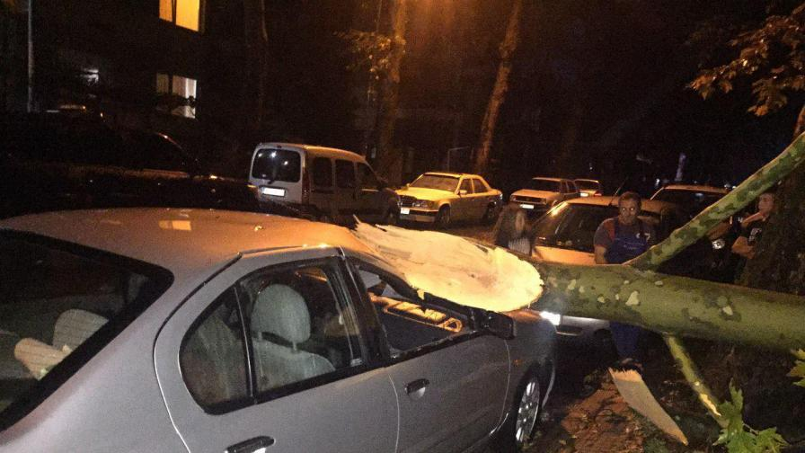 <p>Караянчева: Ураганът в Кърджали смачка колата на баща ми</p>