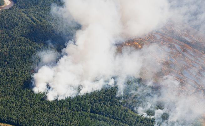 Чудовищен пожар унищожава най-голямата гора на Земята