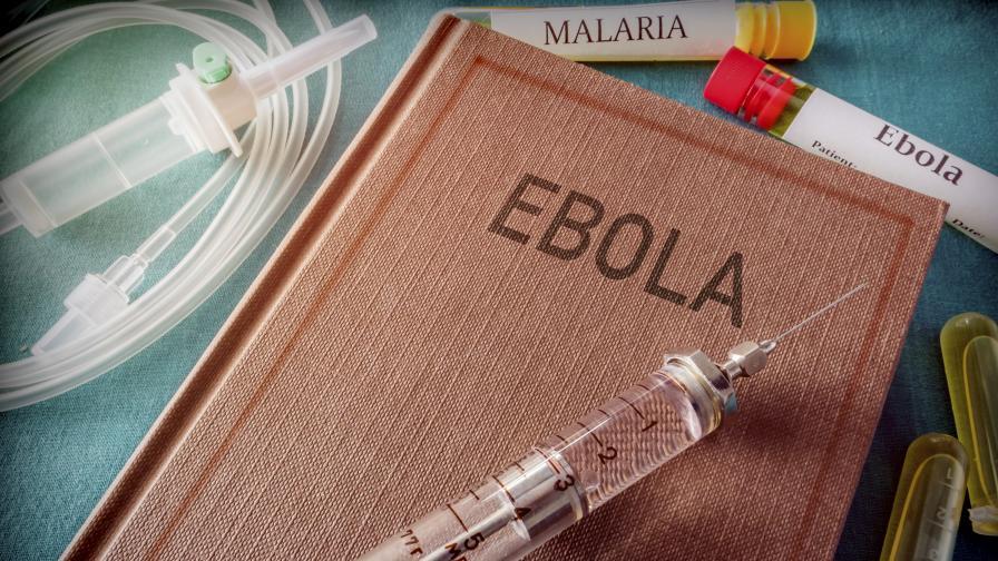 <p><strong>Могат ли кучетата</strong> да ни предпазят от болести като <strong>ебола?</strong></p>