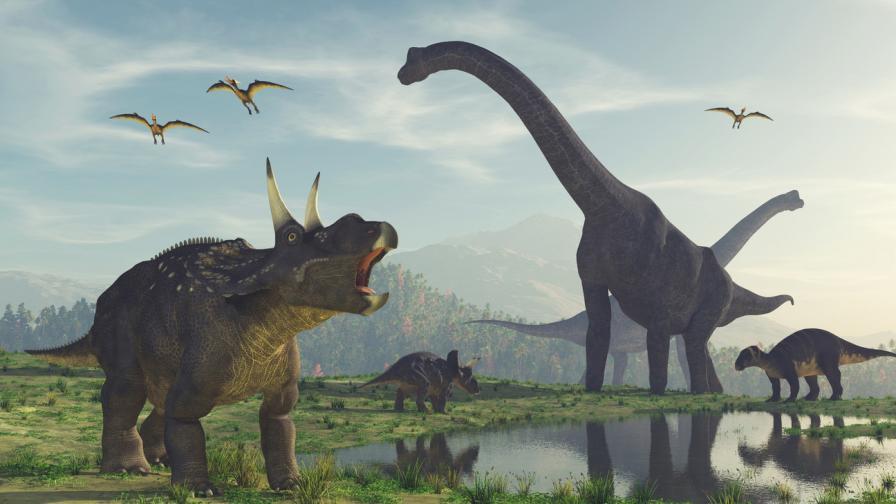 <p>Учени откриха <strong>нов вид динозаври</strong></p>