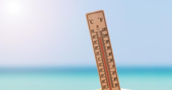 Новата седмица започва с горещини, много високи температури и изобилие