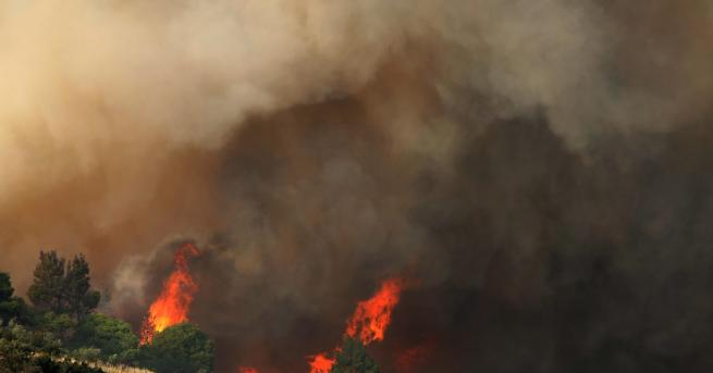 Свят Огнен ад и стотици българи блокирани в Гърция Ферибот