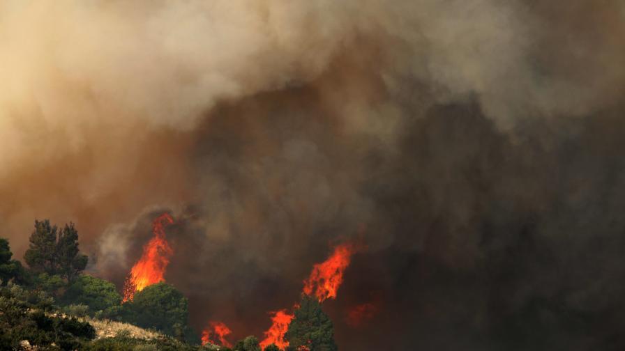 <p>Стотици българи блокирани в Гърция, пожар на Тасос&nbsp;</p>
