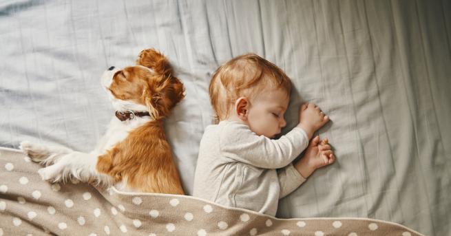 Когато в едно семейство, се очаква бебе един от първите