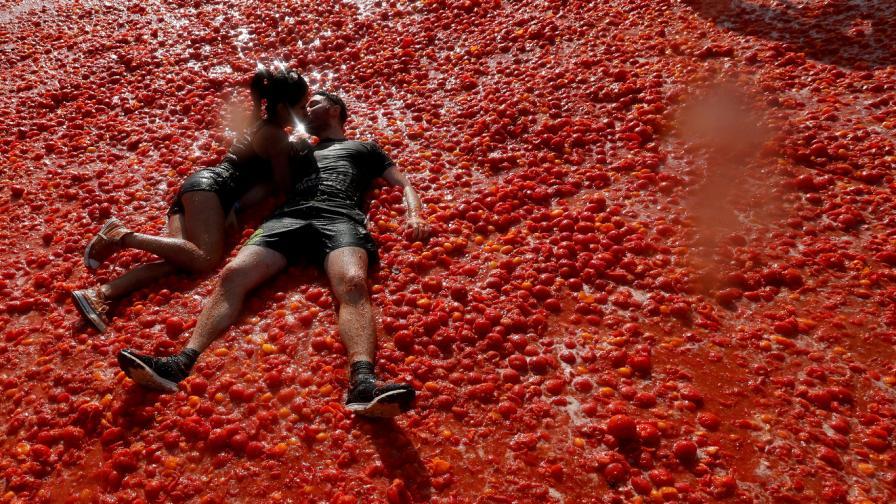 томатина домати домат