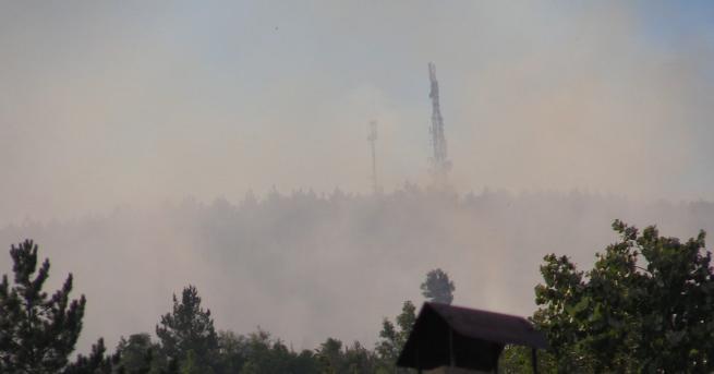 Снимка: Нов пожар пламна над село Реброво