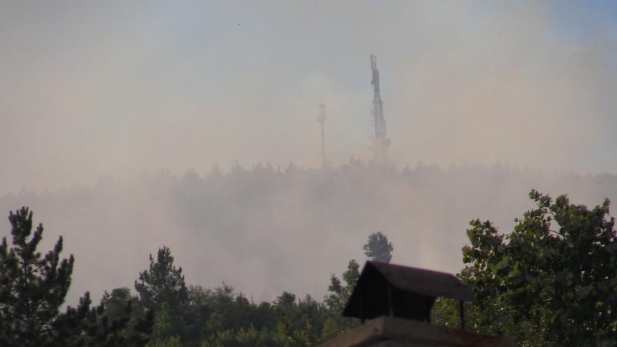 <p>Нов пожар пламна над село Реброво</p>