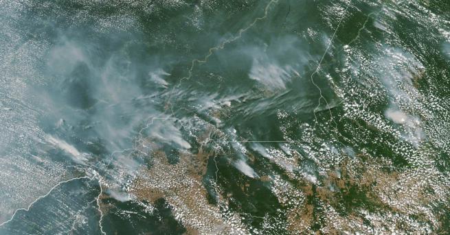 Снимка: Бразилските тропически гори горят с рекордна скорост