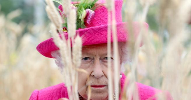 Любопитно Редки снимки на кралица Елизабет с панталони Кралицата е