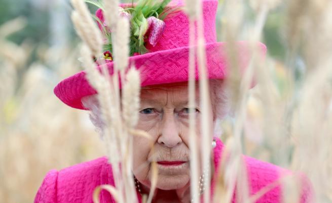 Редки снимки на кралица Елизабет с панталони