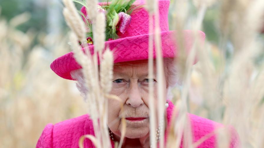 <p><strong>Редки снимки</strong> на кралица Елизабет с панталони</p>