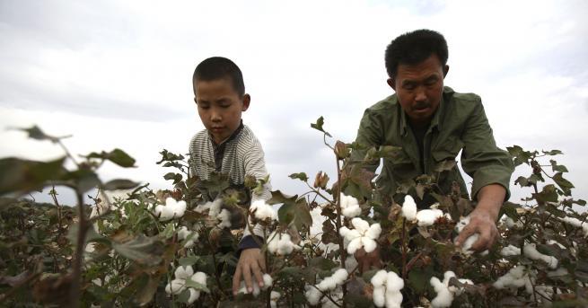 Любопитно 7 мита за модерното робство Какво представлява то и