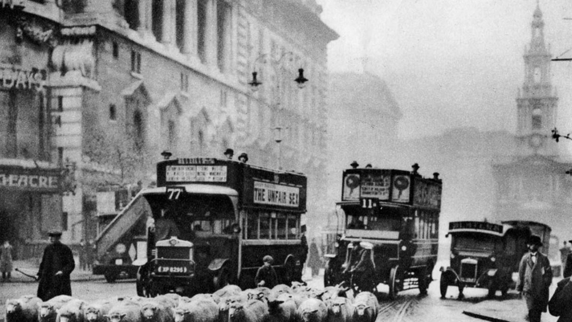 Лондон: Овце вместо косачки в парковете