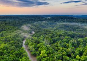 Красивата Амазония, която унищожаваме