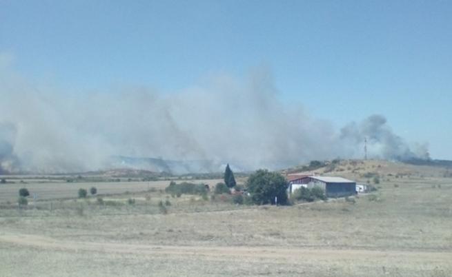 Голям пожар: гори борова гора край Нова Загора
