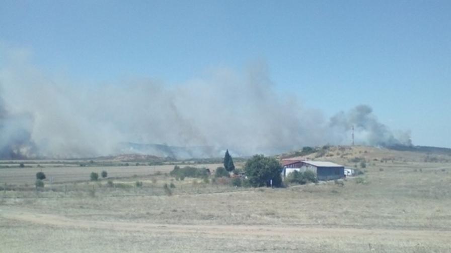 <p>Голям пожар: гори борова гора край Нова Загора</p>