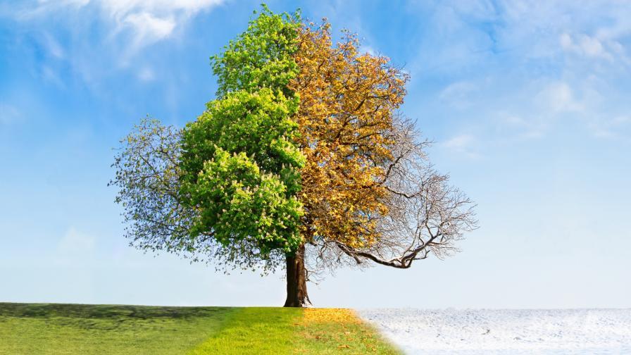 <p>Есента напомня за себе си днес</p>