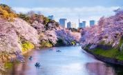 Кои са най-безопасните градове в света