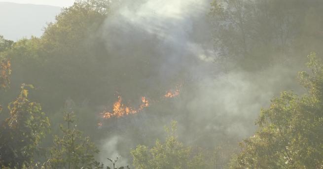 България Пожар изпепели 4 къщи, вадиха хора Извадени са хората,