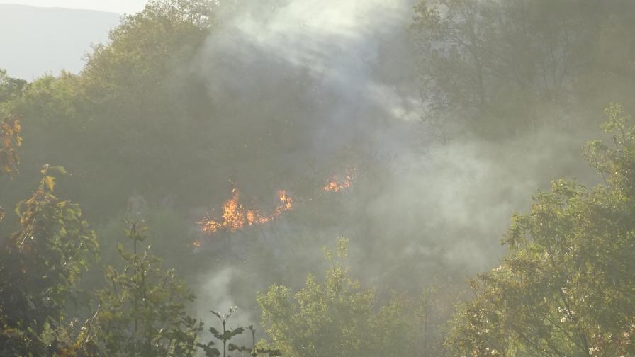 Пожар изпепели 4 къщи, вадиха хора
