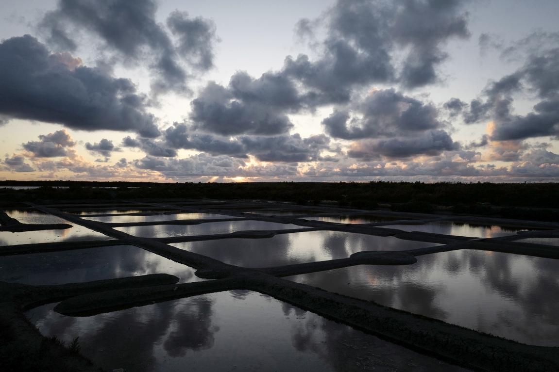 <p>Има около 330 солни работници: 230 са в кооперативно земеделско общество и 100 са независими изпълнители.</p>