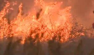 <p>Огромният пожар край летището не стигна горивото</p>