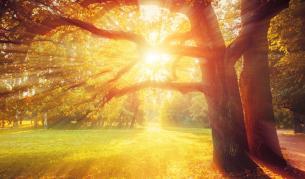 Къде ще е най-топло, до кога ще е лято през октомври