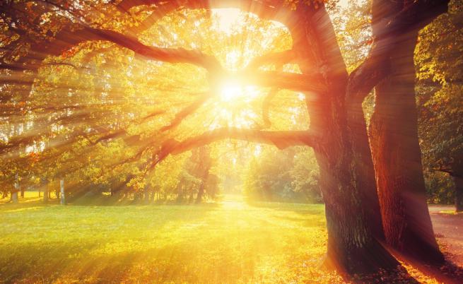 Дългият уикенд започва със слънце
