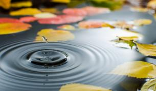 Седмицата започва с есенно време
