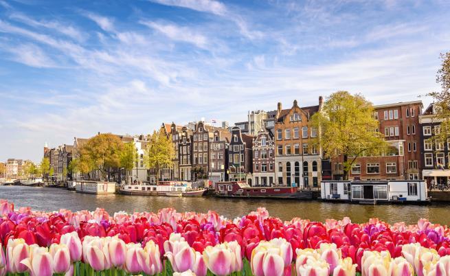 Холандия се отказва от името си