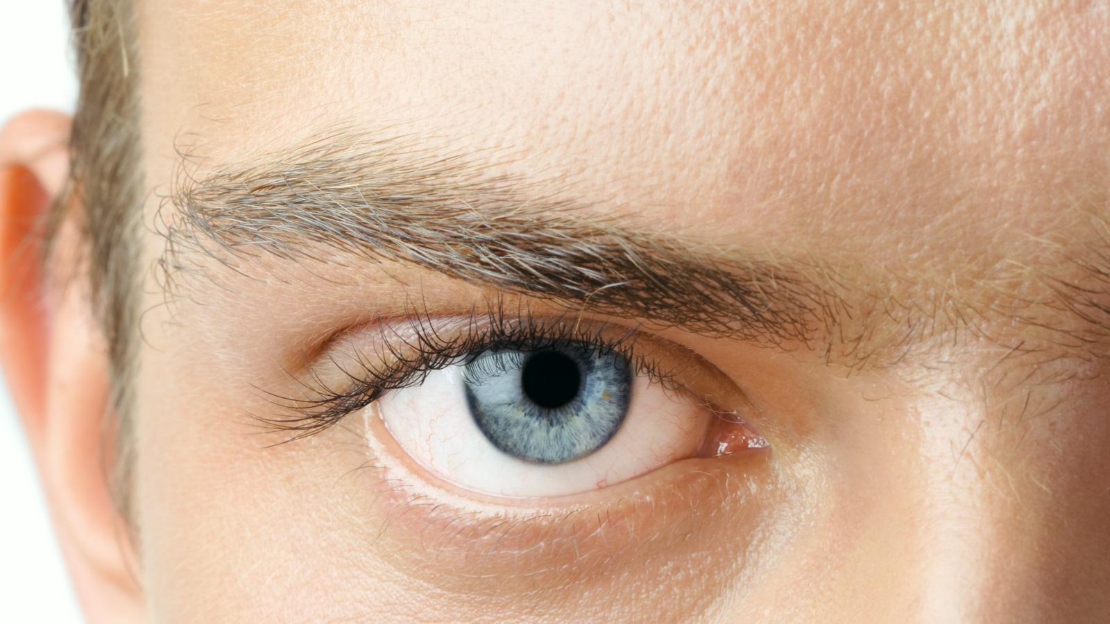 <p>&quot;Цветът на очите може да се окаже ключова характеристика в търсенето на партньор&quot;, отбелязва Брад Дайбър от изследователския екип.</p>
