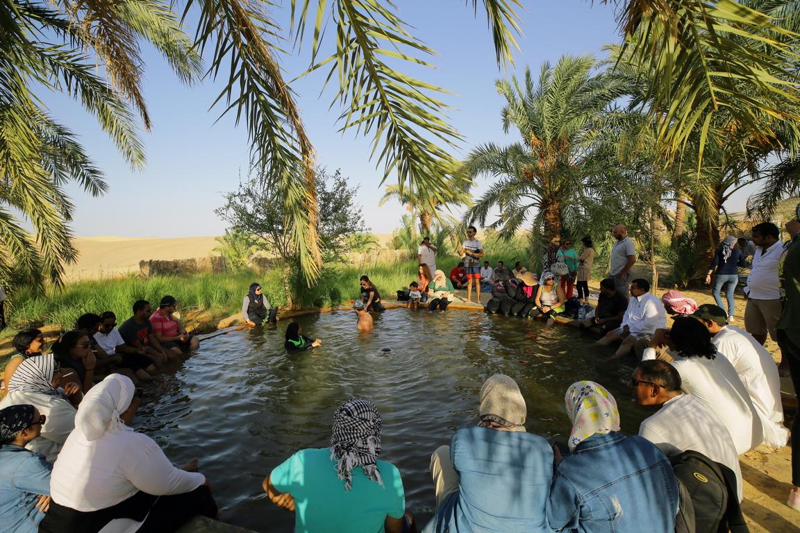 <p>Извън оазисът, обграден от палми, намиращ се на остров в соленото езеро Сива е извора Фатнас.</p>