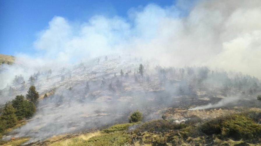 <p>Рила в пламъци, 180 души и хеликоптери срещу пожара</p>