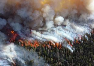 Опасността от пожари в Арктика нараства с бързи темпове