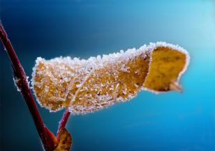 Жълт код за ниски температури в 9 области
