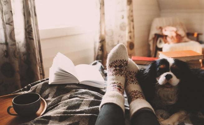 Книгите, които да прочетем през ноември. Стивън Кинг, Аушвиц, Раковски