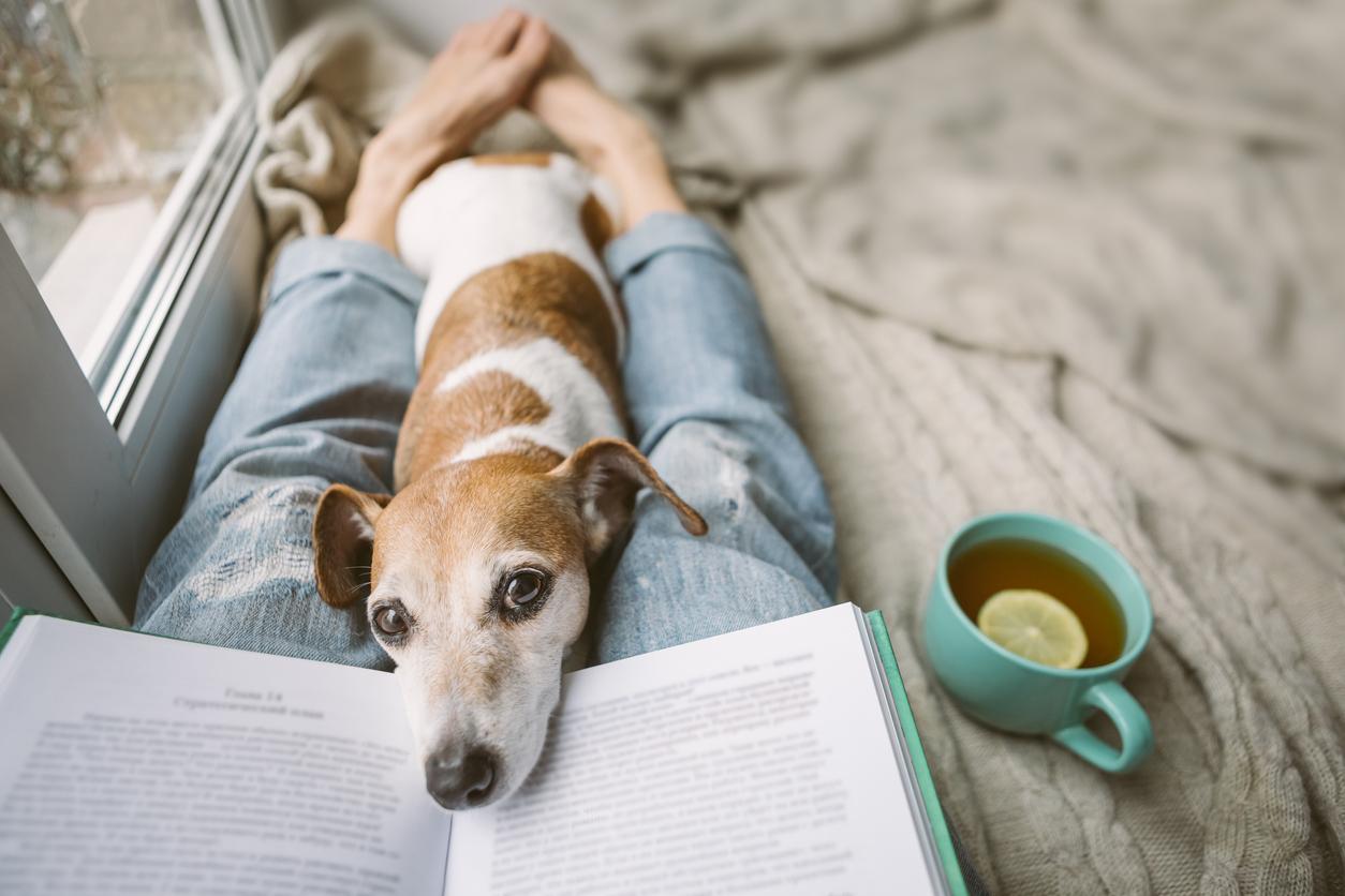 <p><strong>Погрижете се за ума, тялото и душата си</strong> Стресът е един от основните причинители на много заболявания, сред които и диабетът. Затова намерете време да релаксирате.&nbsp;Ходете често на разходки, слушайте любимата си музика или прочетете интересна книга. А преди да посегнете към храната, помислете. Опитайте се да не се храните, когато сте отегчени, разстроени или нещастни. Най-добрият начин за предотвратяване на диабет тип 2 е да направите промени в начина ви на живот, които ще работят за вас в дългосрочен план.</p>