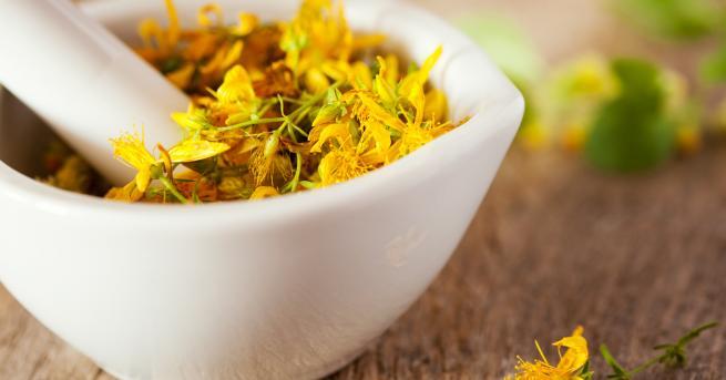 Любопитно Полезните свойства на магическата билка жълт кантарион За ползите