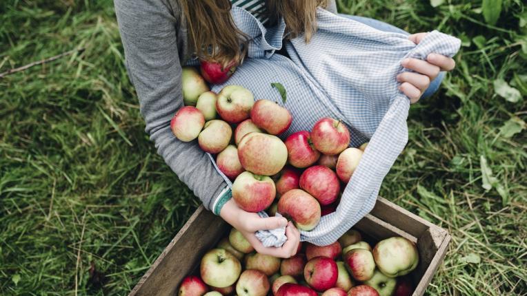 20-те най-полезни храни в света (трябва да се гордеем с първата!)