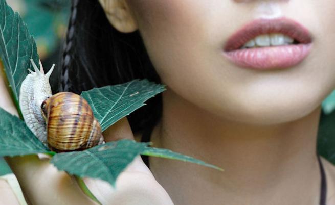 Вълшебните свойства върху кожата ни на една от най-удивителните съставки - Екстрактът от охлюви