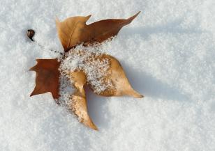 Как да останем в добро здраве през зимния сезон